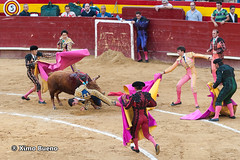 Susto (Ximo_Bueno) Tags: valencia lance toros corrida susto 2014 tauromaquia bous novillada cogida jorgeexpsito
