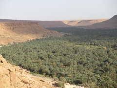IMG_4274 (traveling-in-morocco.com) Tags:
