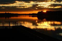 sunset Donau (zwanzigzoll) Tags: autumn trees light sunset red sea sky orange cloud sun tree bird fall water birds clouds canon eos 50mm boat efs ef rimlight 400d