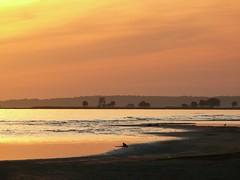 Pärnu beach, Estonia. (veebruar) Tags: sunset sea shore vanagram