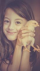 Livia e o Pintinho (Claudio Beck) Tags: friends amigos chicken girl smile yellow vintage kid galinha child friendship little beck daughter chick amarelo faded sorriso criança claudio filha menina pintinho