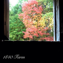 "The view from the old Dutch Door in the goat's stall just keeps getting more and more beautiful each day. Here comes the glorious fall color that New England is known for! • <a style=""font-size:0.8em;"" href=""https://www.flickr.com/photos/54958436@N05/15359020135/"" target=""_blank"">View on Flickr</a>"
