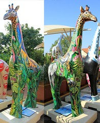 Stand Tall 2013 - 50 years of Colchester Zoo (Karen Roe) Tags: birthday camera uk greatbritain england english female digital canon geotagged photography zoo photo europe flickr photographer shot image unitedkingdom britain painted picture statues snap september celebrations photograph artists giraffes gb british annual member dslr 50 visitor essex eastanglia dayout colchesterzoo standtall 50years 2013 stanway 550d karenroe canoneos550d 50yearsofcolchesterzoo