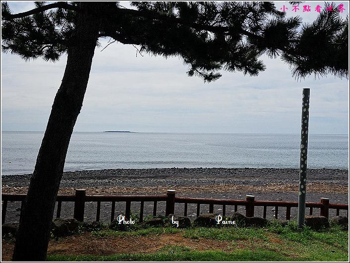 濟州島牛沼河口 (20).JPG