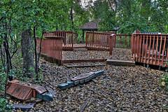 _MG_5579 (JacobBoomsma) Tags: autumn camp fall nature leaves southdakota day september ymca siouxfalls summercamp leifericson