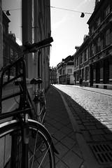 Pays-Bas ternels (ridenpydam) Tags: maastricht paysbas vlo pavs pave limbourg ruepave