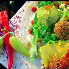 جست طازج صحي طبيعي (justfalafelkuwait) Tags: dinner lunch kuwait جديد مطعم فلافل kuwaitairways eatfresh كويت كويتيات مغذي مطاعم عشاء فطار kuwaitfashion وجبات العقيله kuwait8 جست kuwaitinstagram جستفلافل justfalafelkuwait كويتياتستايل ديلفري جستفلافلالكويت الجيتمول kuwaitkuwaitصحي