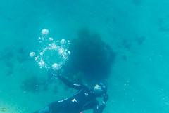 DSC_9815.jpg (d3_plus) Tags: sea sky fish beach japan scenery diving snorkeling  shizuoka   j1  izu     skindiving freediver minamiizu bubblering     nikon1 hirizo    nakagi nikon1j1 1nikkor185mmf18  beachhirizo misakafishingport