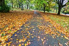 Bellahouston Park (ianmiddleton1) Tags: autumn fall canon glasgow sigma autumnal hdr bellahoustonpark