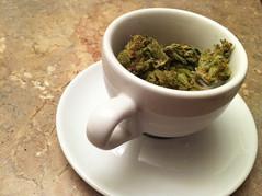 IMG_4997 (sproanddro) Tags: blog washington weed awesome lifestyle medical marijuana cannabis dro spro i502