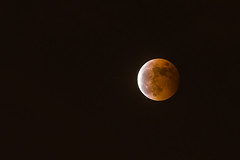 20141008 Lunar Eclipse blood moon (speedbug) Tags: moon eclipse  lunar lunareclipse bloodmoon