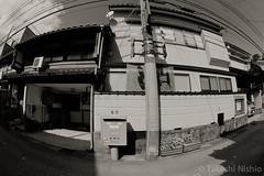 / The Usual Post (Takeshi Nishio) Tags: nikonfm3a  fujiacros100 o56 ei100  16mmfisheye   spd1120deg65min filmno800
