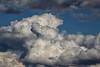 Nuage-chien! (jjcordier) Tags: nuage cumulus ciel météorologie blanc bleu forme
