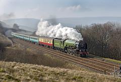 60163 (Geoff Griffiths Doncaster) Tags: 60163 tornado northern rail settle carlisle line railway steam train a1 a1st