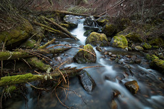 Early Spring Along Cascade Creek. Lee Metcalf Wilderness, Mont. (Apr. 1, 2017) (Thomas Cluderay) Tags: montana wilderness leemetcalf outdoors nature hiking dayhike longexposure creek water stream moss forest gallatin photography naturephotography landscape landscapephotography