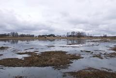 Viikki (mattisunell) Tags: helsinki pelto tulva vanhankaupunginlahti viikki