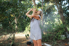 Travellers (slow paths images) Tags: woman french india drink coconut simplelife nature green traveller