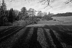 Shadows over the land... (zapperthesnapper) Tags: sonyrx100 sonycybershot sonyimages sony blackandwhite mono monochrome cumbria field rural shadow shadows