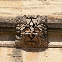 Green man | Carved corbel | Magdalen College | Oxford | April 2017-48 (Paul Dykes) Tags: oxfordshire oxford england uk april 2017 universityofoxford oxforduniversity magdalencollege grotesque carving sculpture greenman