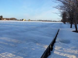 散歩道雪景色