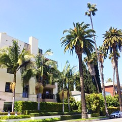 (Simiram) Tags: los angeles usa palms beverly hills
