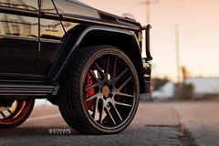 Strasse Wheels Mercedes Benz G65 AMG (Strasse Wheels) Tags: strasse strasseforged forged strasseforgedwheels 3piece 3piecewheels 3piecerims rims lamborghini porsche ferrari wheels strassewheels teamstrasse fgrgedwheels g63 g63amg g55 g55amg gwagon gwagonwheels gwagonrims g63wheels g63rims g63amgwheels g63amgrims amgrims amgwheels renntech renntechwheels renntechrims g800 brabus brabusg63 brabusg65 brabusg55 brabusg800 amglife mbworldorg brabuswheels brabusrims g65 g65amg g65wheels g65rims blackg65 blackg63 blackg55 blackgwagon strassesm7 strassesm7t