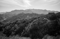 The Great Wall (romanboed) Tags: 八达岭 leica m 240 summicron 28 asia china beijing badaling yanqing great wall spring blue sky travel monument architecture monochrome black white bw