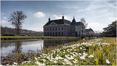 Spring has arrived! Netherlands (CvK Photography) Tags: canon color cvk estate europe nature netherlands outdoor overijssel reflection singraven spring twente denekamp nederland nl
