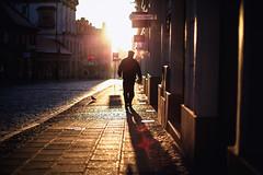 glory man (ewitsoe) Tags: spring details ewitsoe erikwitsoe poznan cityscape canon eos 5ds 50mm 14 sun sunny polska shadows