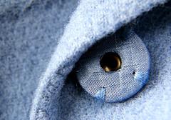 the blue wool coat (annacajem) Tags: coat blue maxmara macro eye button cloth textile tyg ylle wool blå macromondays mondays clothtextile