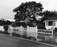 TC Debbie hit several towns in QLD, & the Northern rivers of NSW, AUSTRALIA (YAZMDG (16,000 images)) Tags: cyclone floods nsw australia mullumbimby northernrivers cycloneaftermath houses reflections water overflowing curiosity inquisitiveness paddocks streetsscapes