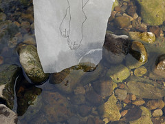 testing the water (wild goose chase) Tags: drawing paper river pebble stone feet
