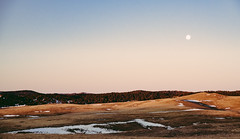 the moon & the morning (almostsummersky) Tags: plains morning wildlifelooproad custerstatepark sunrise winter slope forest dawn light blackhills moon southdakota hills sky snow custer unitedstates us statepark