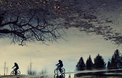Spring Cycling (Alex L'aventurier,) Tags: montreal montréal quebec canada spring printemps puddle flaque eau water reflet reflection bikes cycliste bicycle bicyclette trees arbres street rue urbain urban silhouette