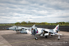 (jonathan_ed1984) Tags: jonathanwintlephotography jet jets classicjets aviation aviationlover aviationgeek aviationlovers aviationphotographer aviationphotography aviationporn timelineevents tle raf cosford rafcosford april 2017 vintage vintagejets harrier vtol vstol gr3 harriergr3 sea seaharrier royalnavy naval jumpjet arctic camo arcticcamo