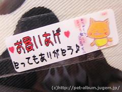 ペット服(牛コスプレ)の写真4